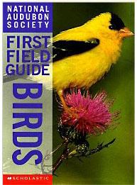 firstfieldguidebirds