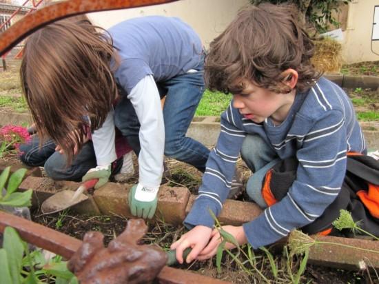 planting+bulbs