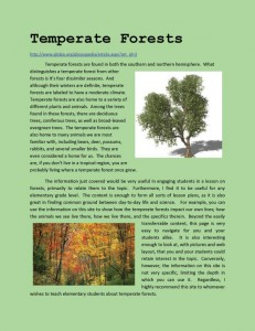 forestfinal02