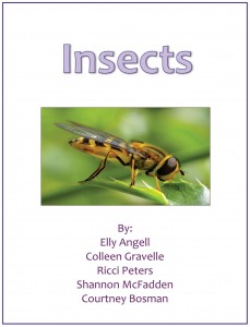 2InsectsFinal1