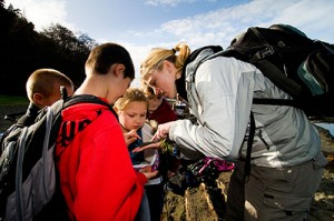 Deepening Science Education, Increasing Ecological Literacy