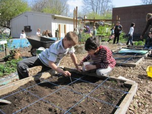 Environmental Literacy in Action: Abernethy Elementary's Farm-to-School and School Garden Program