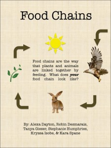 Resources for the Classroom — Food Chains