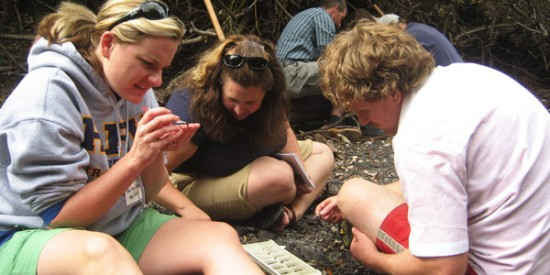 Teachers discover authentic lessons in crayfish and caddis flies
