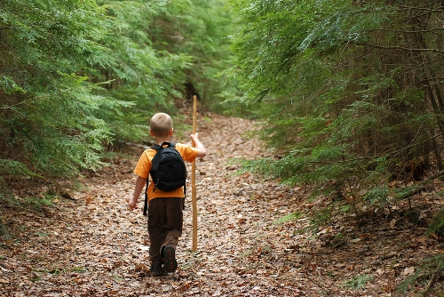 Going Off Trail – New Paths in Programming to Connect Children With Nature